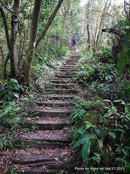 猴山岳步道26.jpg
