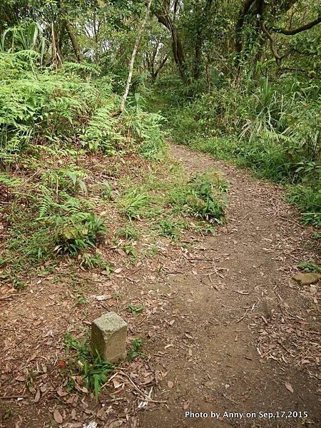 猴山岳步道27.jpg
