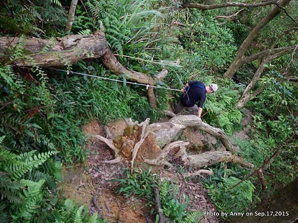 猴山岳步道31.jpg