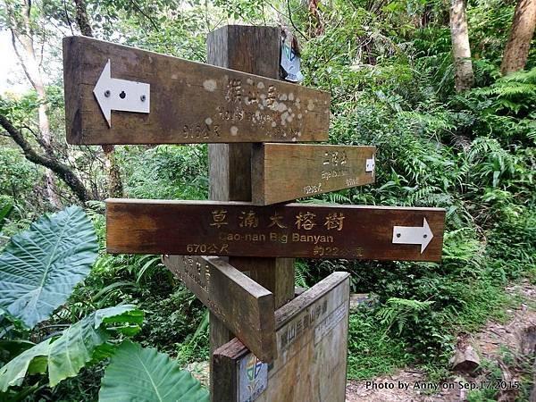 猴山岳步道33.jpg