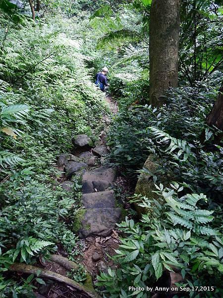 猴山岳步道35.jpg