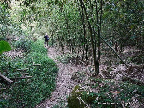猴山岳步道38.jpg