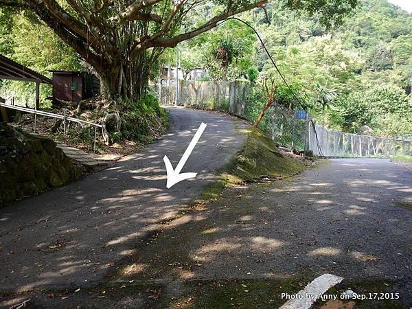猴山岳步道40.jpg