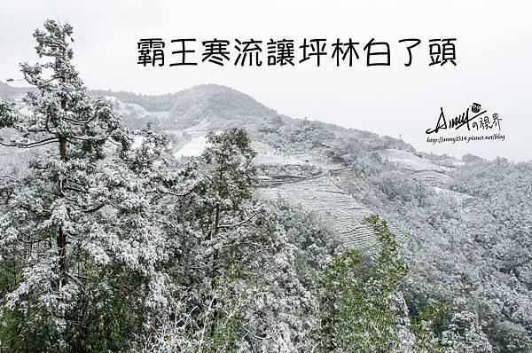 台灣下雪 坪林下雪8.jpg