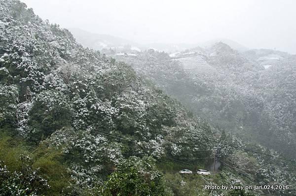 台灣下雪 坪林下雪2.jpg