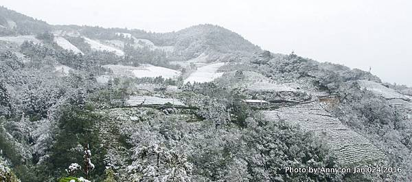 台灣下雪 坪林下雪10.jpg