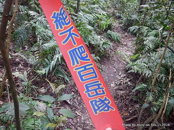 姜子寮步道25.JPG
