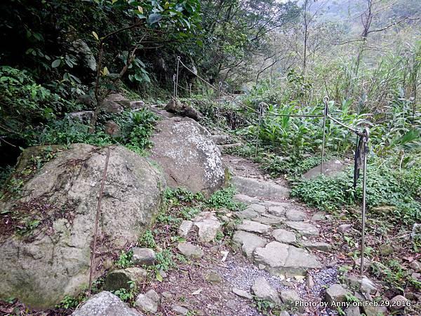姜子寮絕壁步道7.JPG