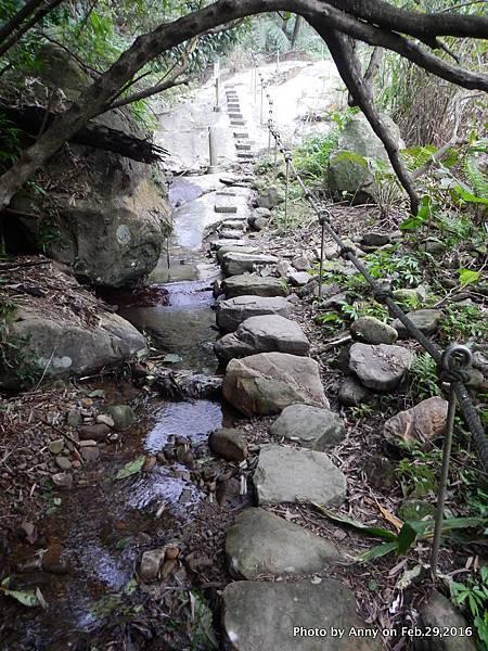 姜子寮絕壁步道16.JPG