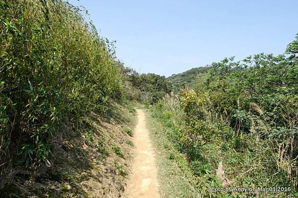 鶯歌石步道15.jpg