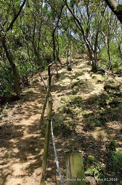 鶯歌石步道13.jpg