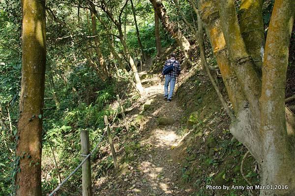 鶯歌石步道24.jpg