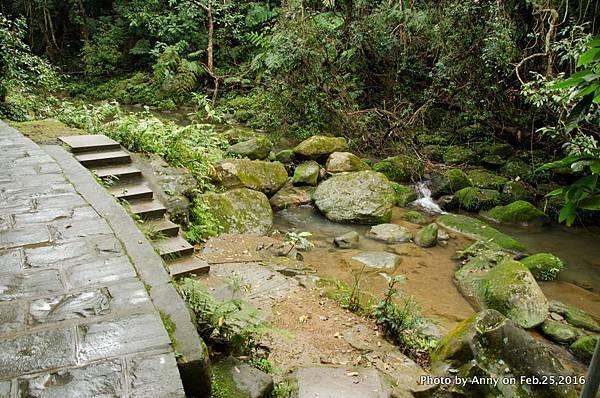 圓覺寺步道2.jpg