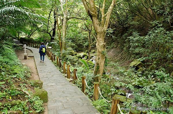 圓覺寺步道10.jpg