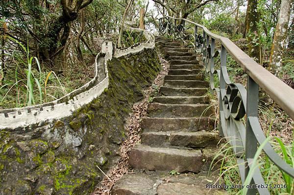 鯉魚山步道4.jpg