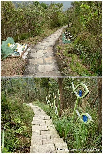 鯉魚山步道1.jpg
