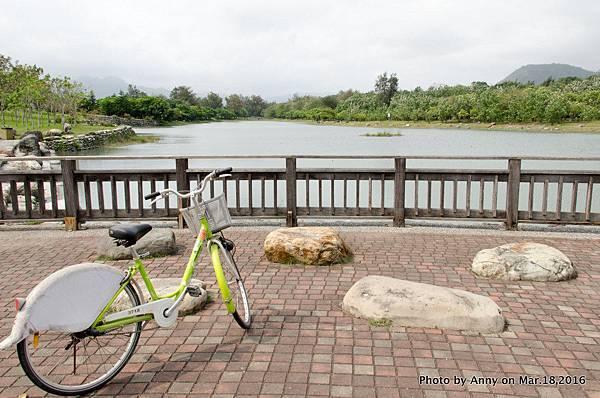 台東森林公園 鷺鷥湖5.jpg