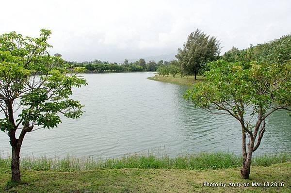 台東森林公園 鷺鷥湖 10.jpg