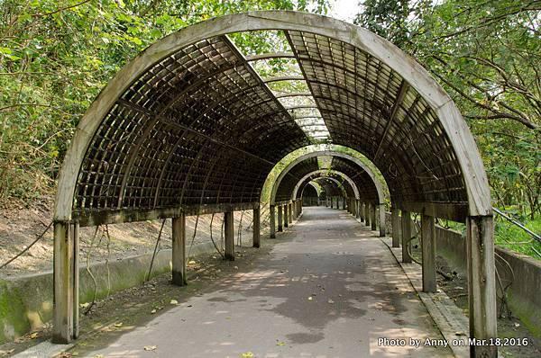 台東森林公園 花架隧道14.jpg