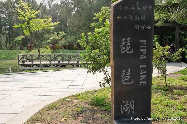 台東森林公園 琵琶湖17.jpg
