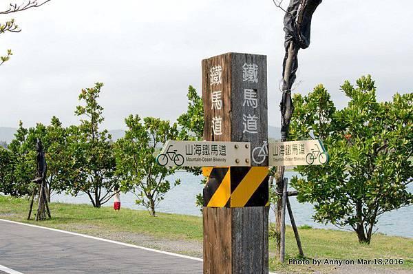 台東森林公園 活水湖18.jpg