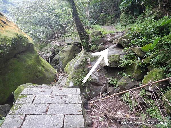 石碇烏塗溪溪畔步道13.jpg