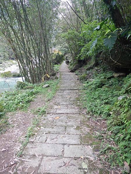 石碇烏塗溪溪畔步道12.jpg