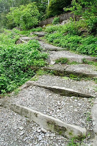 宜蘭松羅步道9.jpg