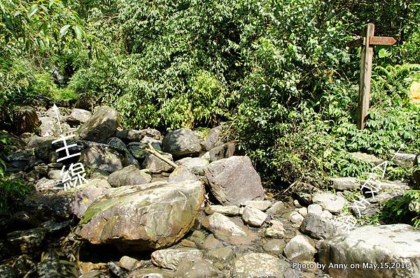 宜蘭松羅步道34.jpg
