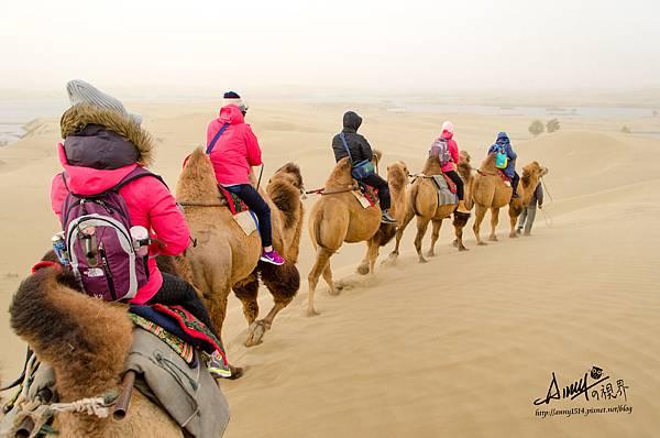 塔克拉瑪干沙漠騎駱駝26.jpg