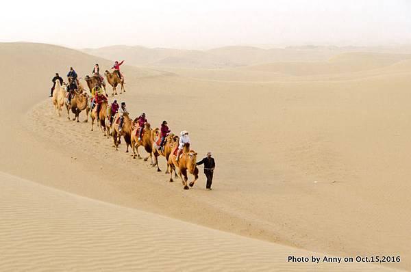 塔克拉瑪干沙漠騎駱駝10.jpg