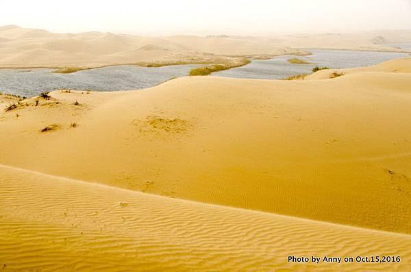 塔克拉瑪干沙漠騎駱駝18.jpg