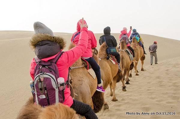 塔克拉瑪干沙漠騎駱駝15.jpg