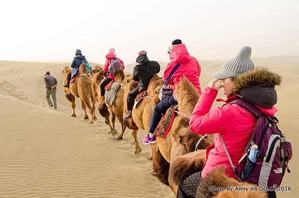 塔克拉瑪干沙漠騎駱駝16.jpg