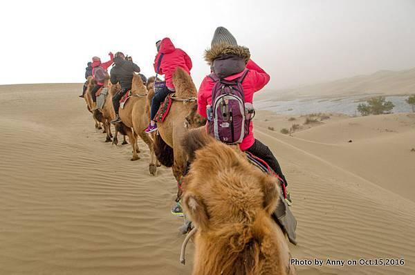 塔克拉瑪干沙漠騎駱駝19.jpg