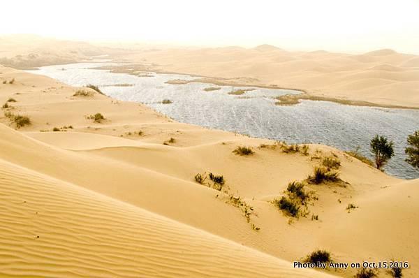 塔克拉瑪干沙漠騎駱駝23.jpg