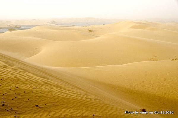 塔克拉瑪干沙漠騎駱駝17.jpg
