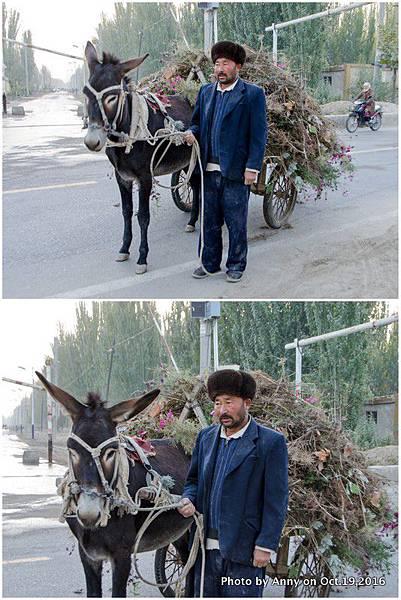 新疆農民與毛驢.jpg