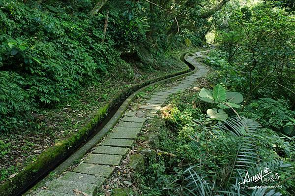 石門青山瀑布步道14.jpg