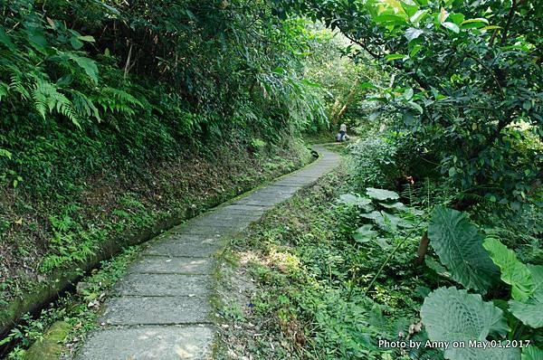 石門青山瀑布步道10.jpg