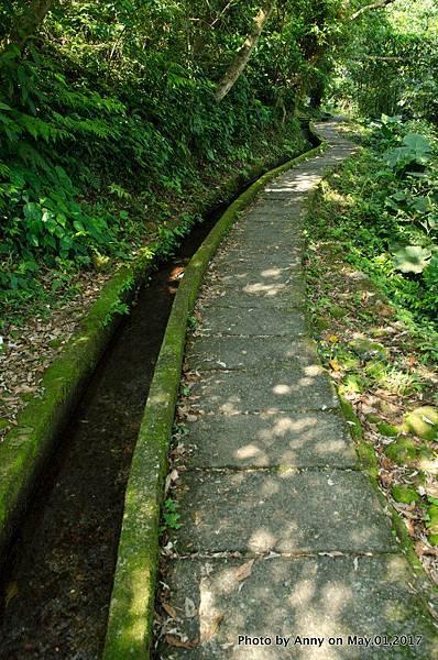 石門青山瀑布步道11.jpg