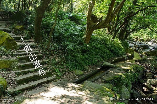 石門青山瀑布步道16.jpg
