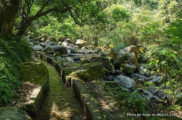 石門青山瀑布步道17.jpg