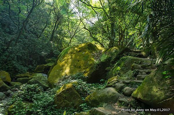 石門青山瀑布步道21.jpg
