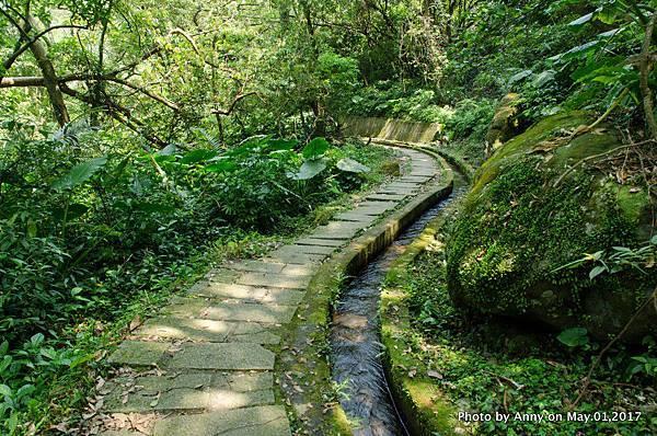 石門青山瀑布步道36.jpg
