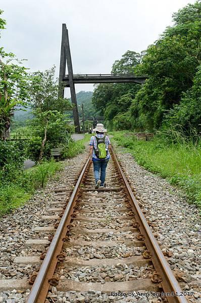 望古慶和斷橋 慶和吊橋1.jpg