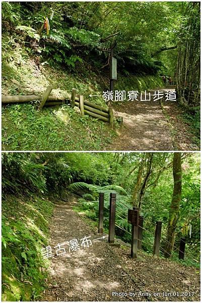 望古賞瀑步道2.jpg