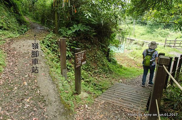 望古賞瀑步道19.jpg