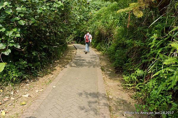 翠山步道7.jpg
