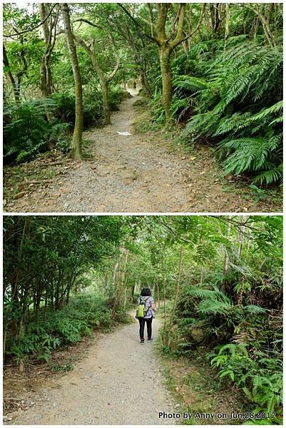 翠山步道2.jpg